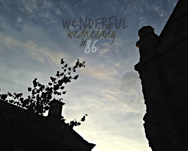Wonderful Wednesday #86