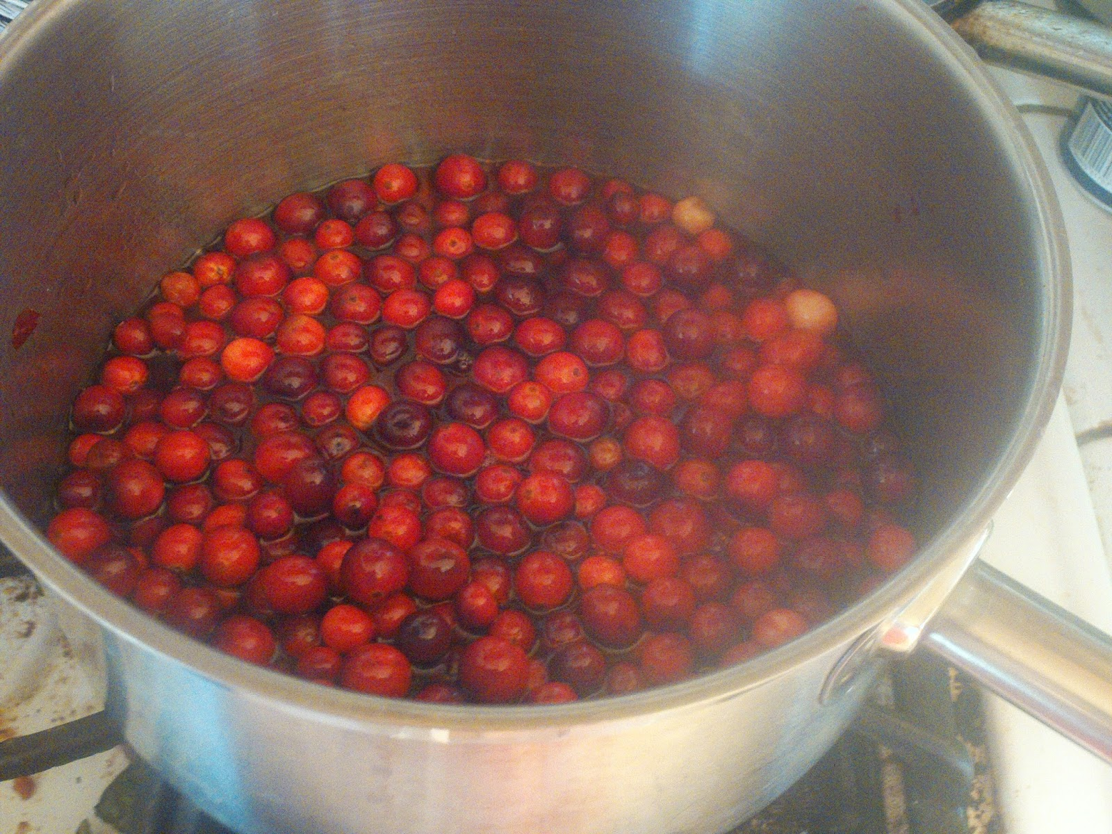 Cranberry Brown sugar Sauce