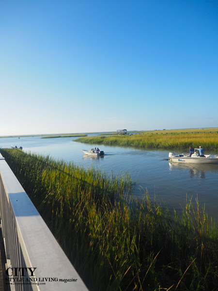 Cape Romain National Wildlife Refuge
