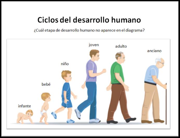 Desarrollo y crecimiento humano