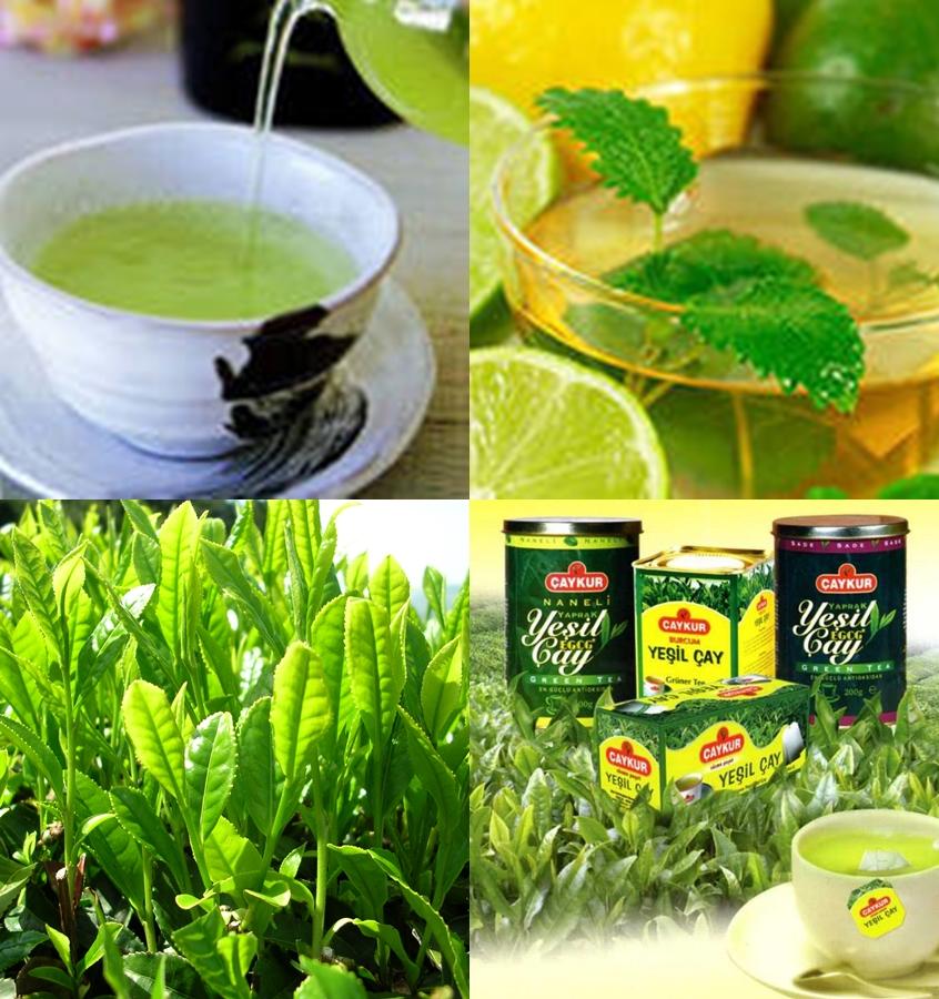 Yeşil Çay Faydalı Mı: Yeşil Çayın Faydaları