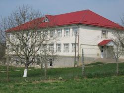 Școala noastră