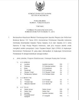 PENGUMUMAN CPNS 2013 TERBARU Hasil Tes CPNS Seleksi Nasional Pegawai Negeri