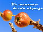Un manzano desde esqueje