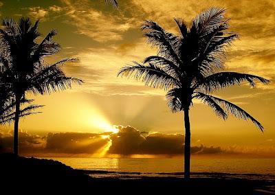 Fotos lindas do por do sol