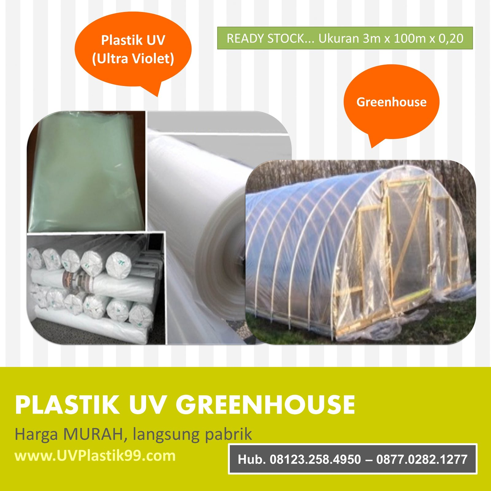 Plastik UV Greenhouse Murah