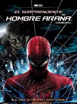 El Sorprendente Hombre Araña Poster 2012