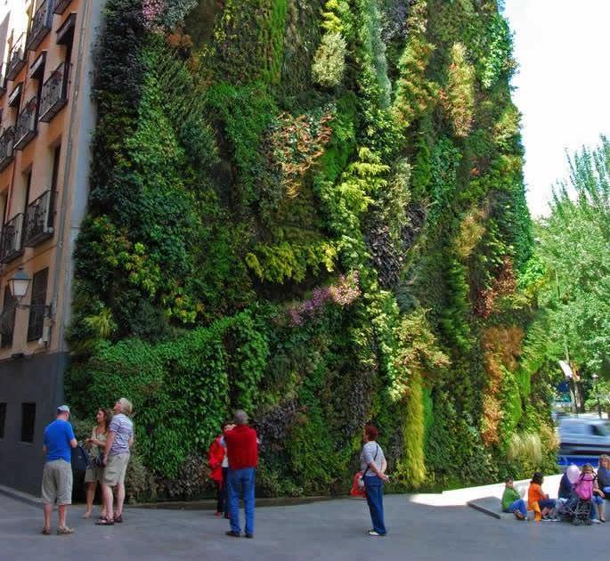 Sol agua tierra cocina de temporada saludable - El jardin vertical ...