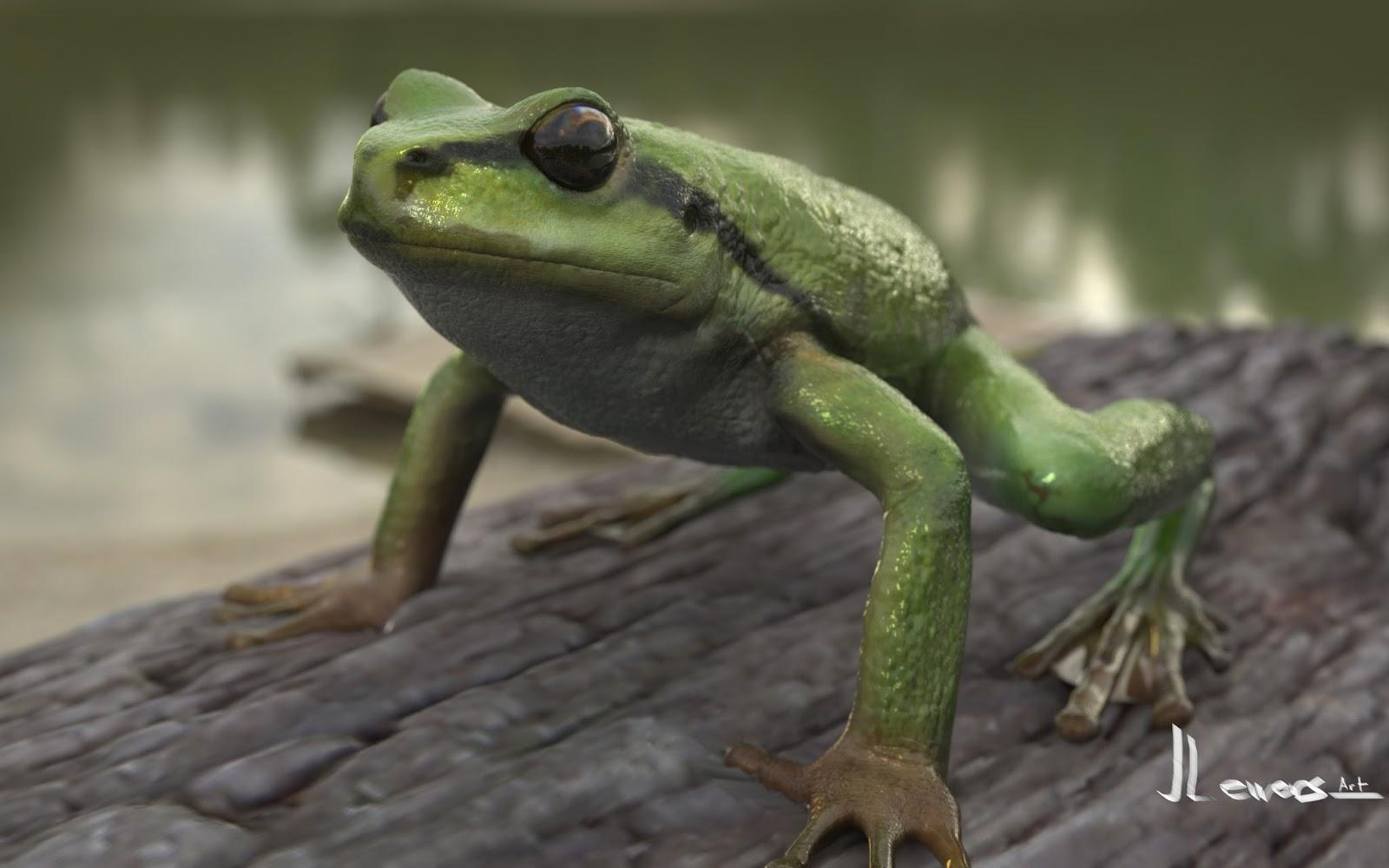 Pacific Tree Frog | Justin Lewers Art