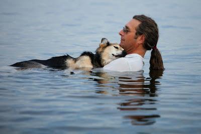 perrito enfermo con artritis duermiendo en el pecho de su amo en el agua de un lago