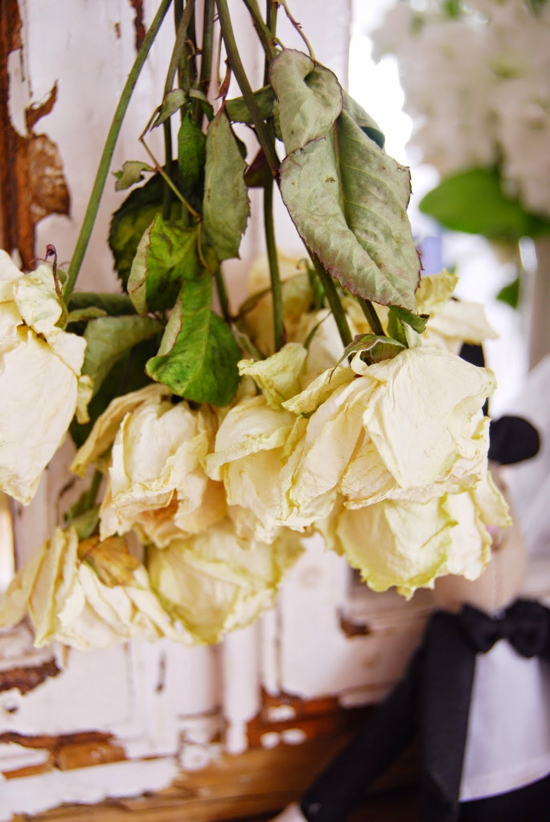 Drying Flowers Brick Dust Glitter