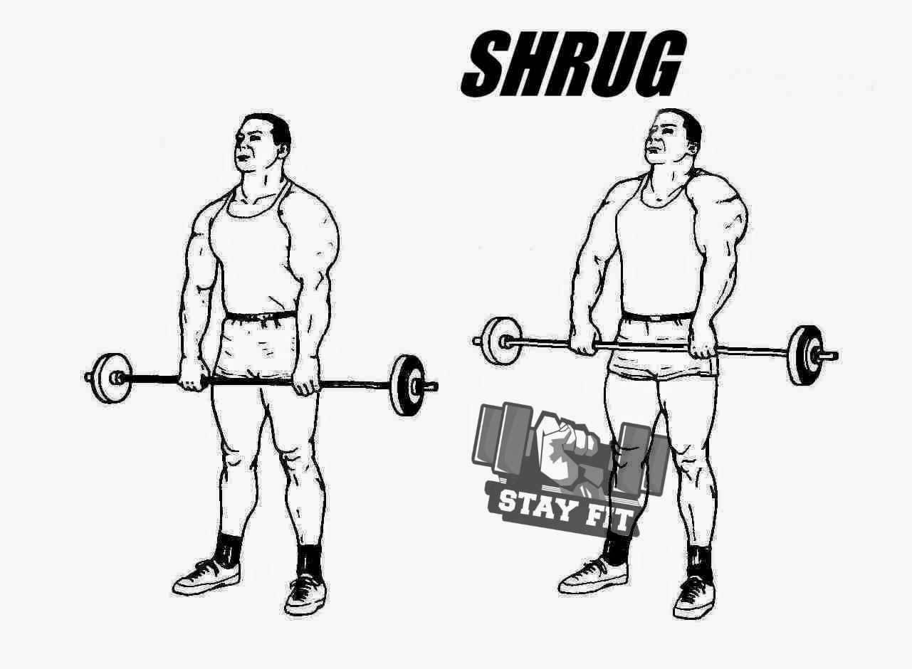 Traps Exercises ~ Stay Fit