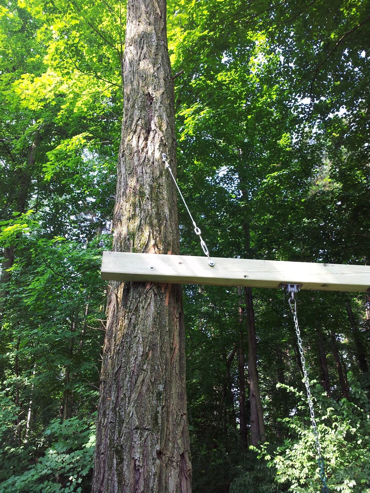 Build Playset Between  Trees