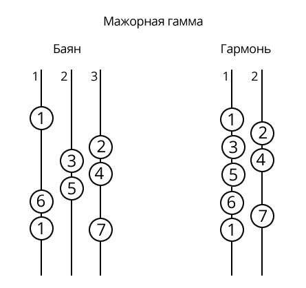Схема нот на гармони 15х8