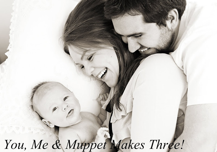 You, Me and Muppet Makes Three!