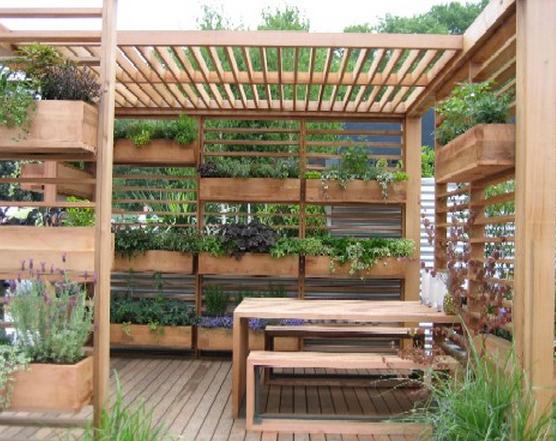 Membuat Taman di Lahan Terbatas Dengan Vertikultur. & Cara Membuat Desain Rumah Online - Rumah Yoel