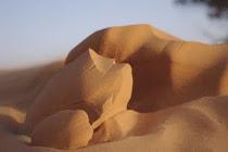 Natur & Beduinen - Diashows ab 2012