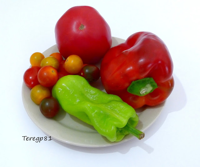 pimineto rojo, pimineto verde, tomates cherry, tomate