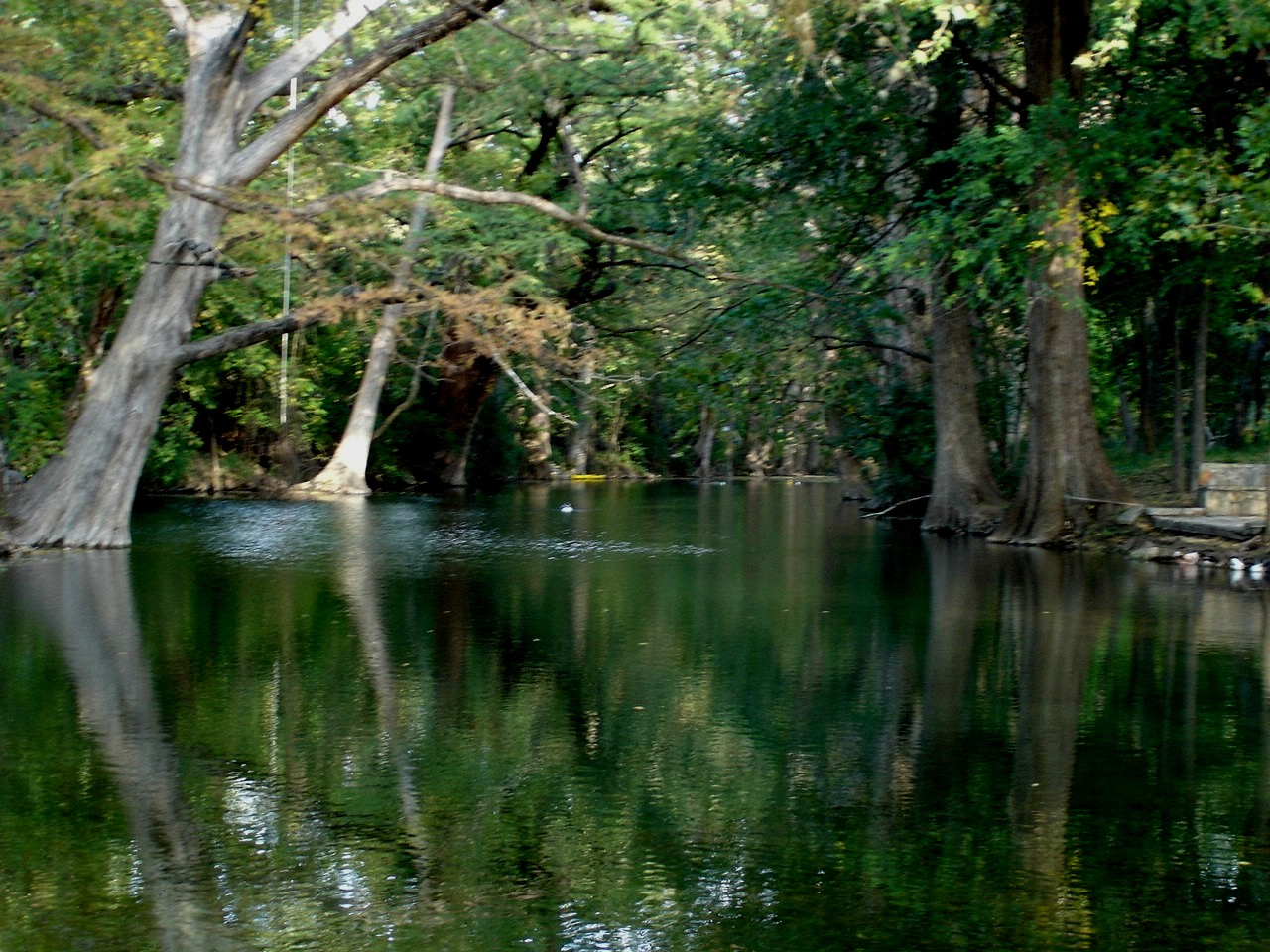 Lisa S Point Of View Wimberley Texas A Little Piece Of