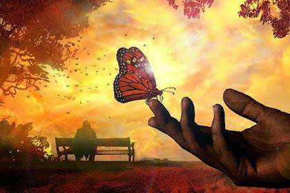 Pengalaman Suami Kala Istrinya Reinkarnasi Menjadi Kupu-kupu
