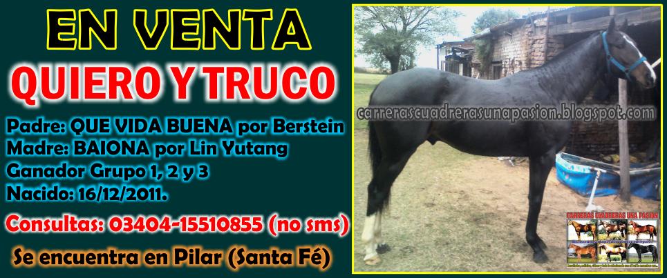 QUIERO Y TRUCO - 11.07.2014