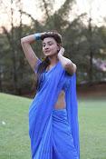 Neelam Upadhyay pics in Blue saree-thumbnail-22
