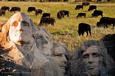 Moving Mountains One Photography At a Time Alzheimers by Dakota Visions Photography LLC Mt Rushmore Buffalo Bison