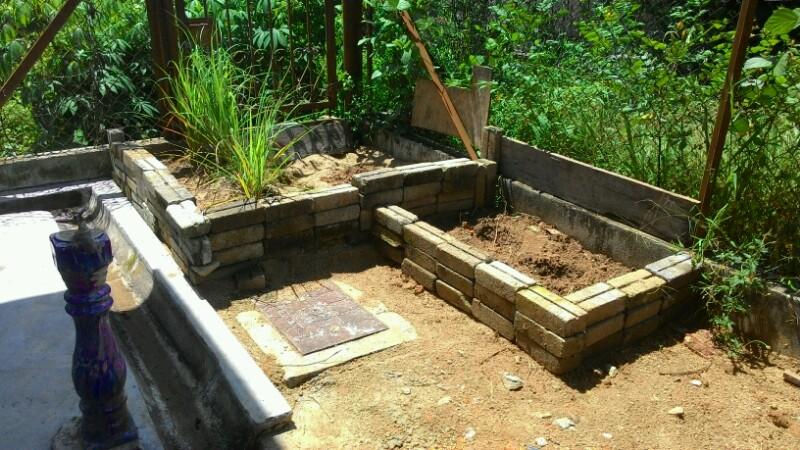 Kebun Sayur Mini Saya