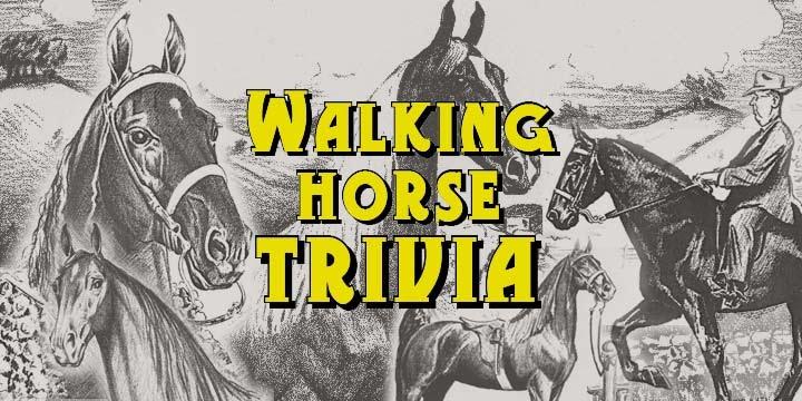 Walking Horse Trivia