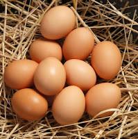 البيض والربو