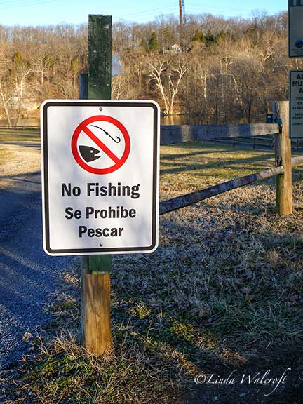 sign on fence says no fishing