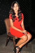 Glamorous Actress Sana Photo shoot gallery-thumbnail-11