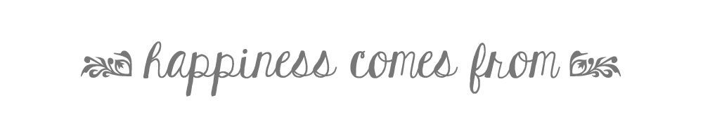 happiness comes from