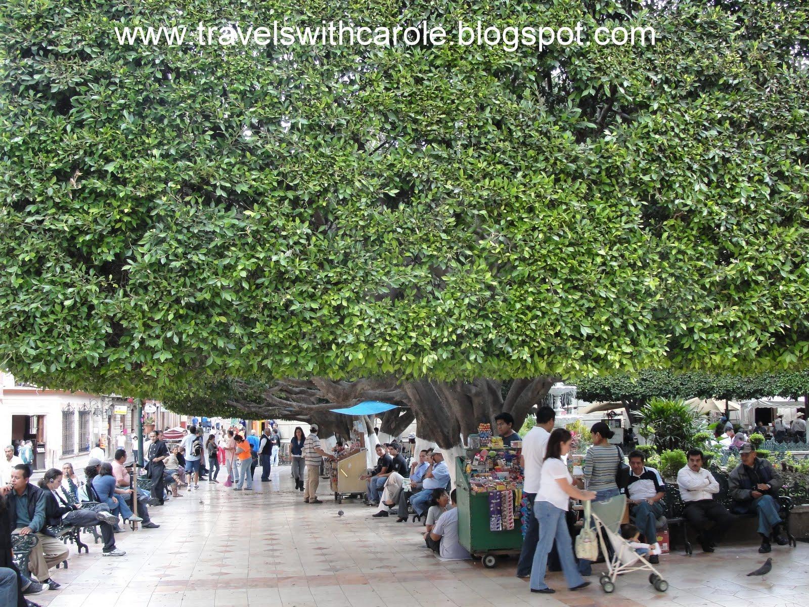 Travels With Carole: Sights to See: Jardin de la Union/Union Garden ...