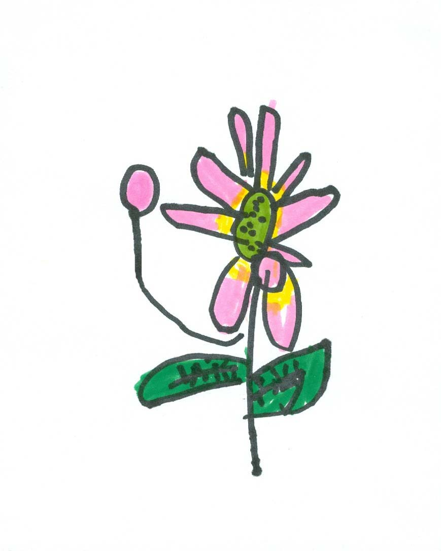 Art For Small Hands Drawing Flowers