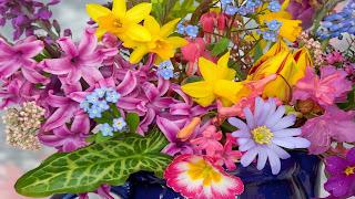 Colorgul Flowers