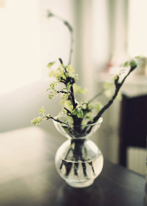 old glass flower vase