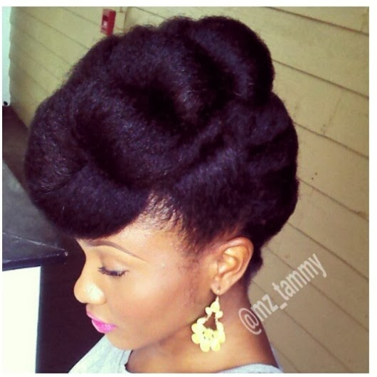 natural hairstyles buns : ... Hairnamix: Its The Grammys - Red Carpet Ready Natural Hairstyles