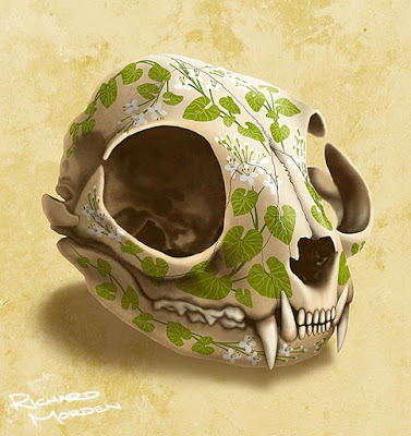 illustration of a decorated cat skull