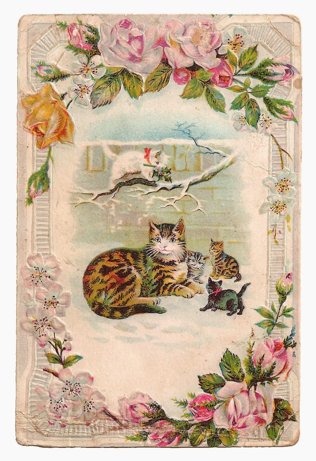 http://4.bp.blogspot.com/-gU-369MaPwg/VOjyaBLQfLI/AAAAAAAAVjk/-PSS67wlVfI/s1600/cat_kittens_rose_garden_pc1.jpg