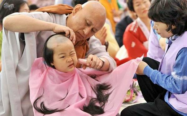 Funny Young Korean monks boy traditional bald | Funny animal picture of the day 22 05 2012 | Totally Cool Pix | Big Picture | funny boy | Traditional Bald | Chiniese | religious bald | young korean guy | cute boy