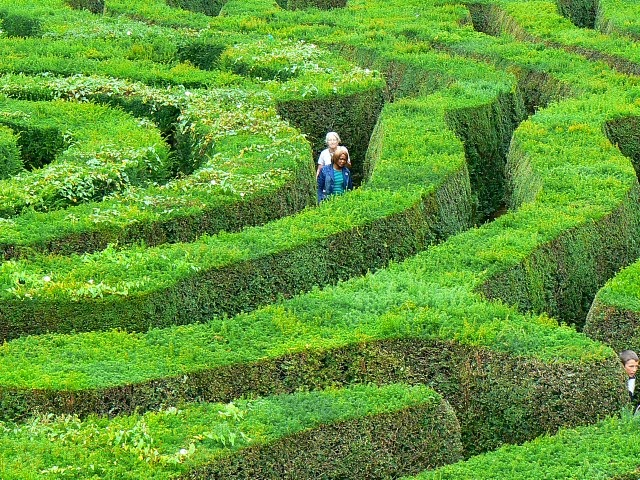 "Photo of ""The maze, Longleat safari park near to Horningsham, Wiltshire, Great Britain""  © Copyright Brian Robert Marshall and licensed for reuse under Creative Commons License 3.0."