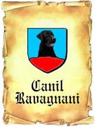 Canil Ravagnani
