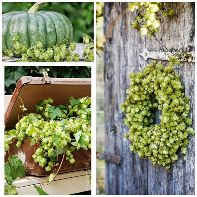 Hop Fall decoration