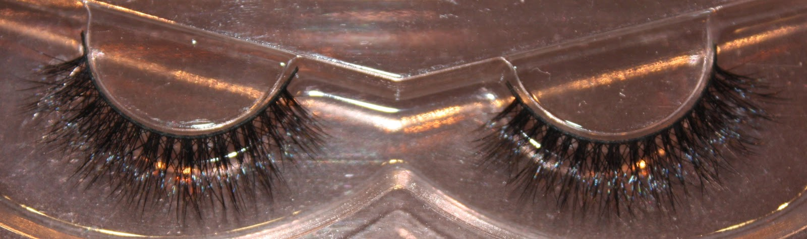 Esquido Lashes in Lashlorette