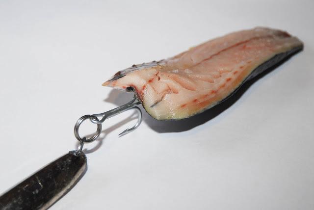 клюет ли рыба в полнолуние