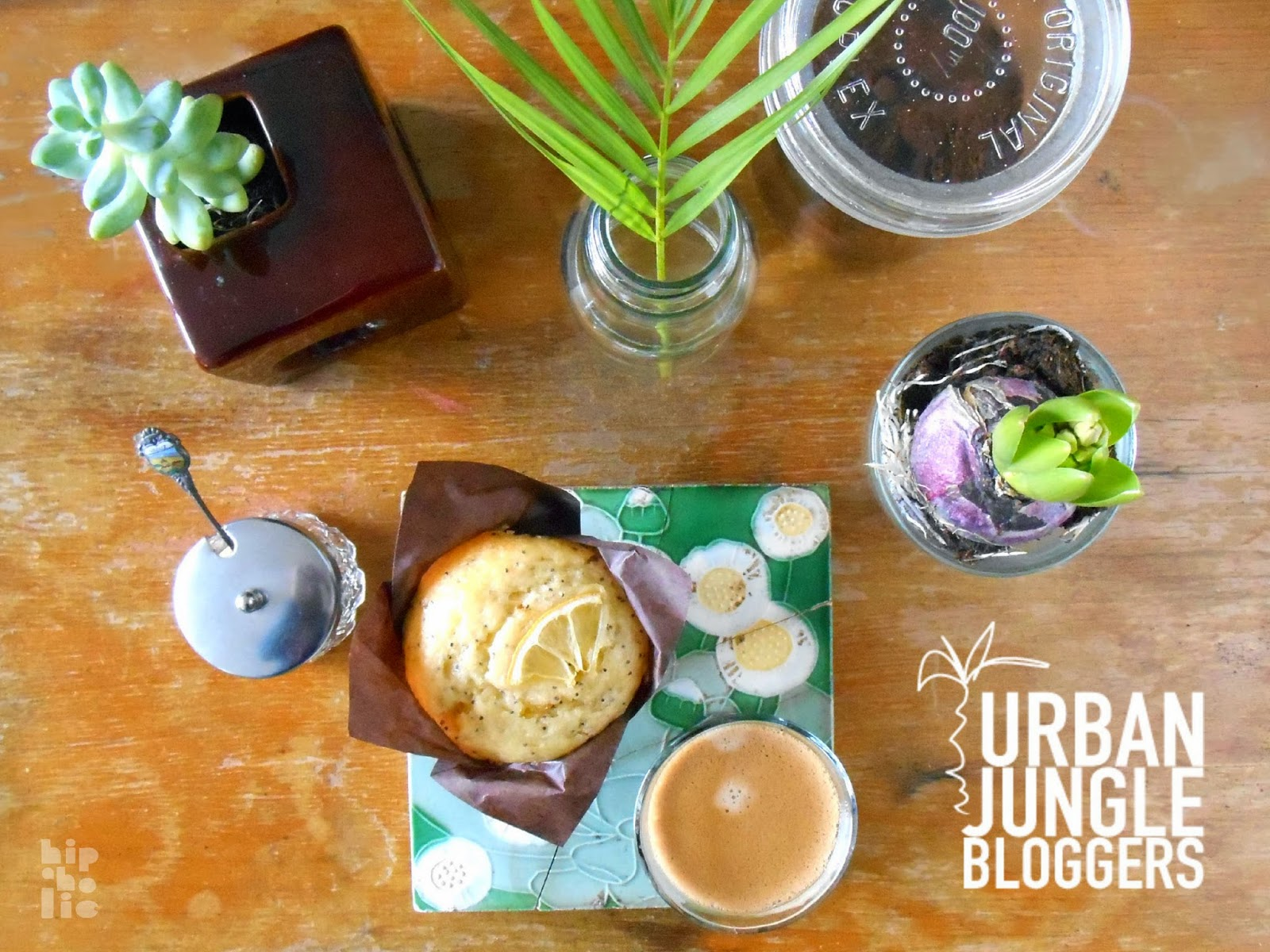 Urban Jungle Inspiratie : Hipaholic blog lifestyle blog met inspiratie over interieur