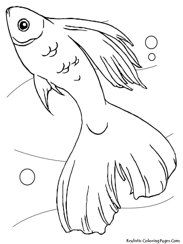coloring pages and tropical fish - photo#5