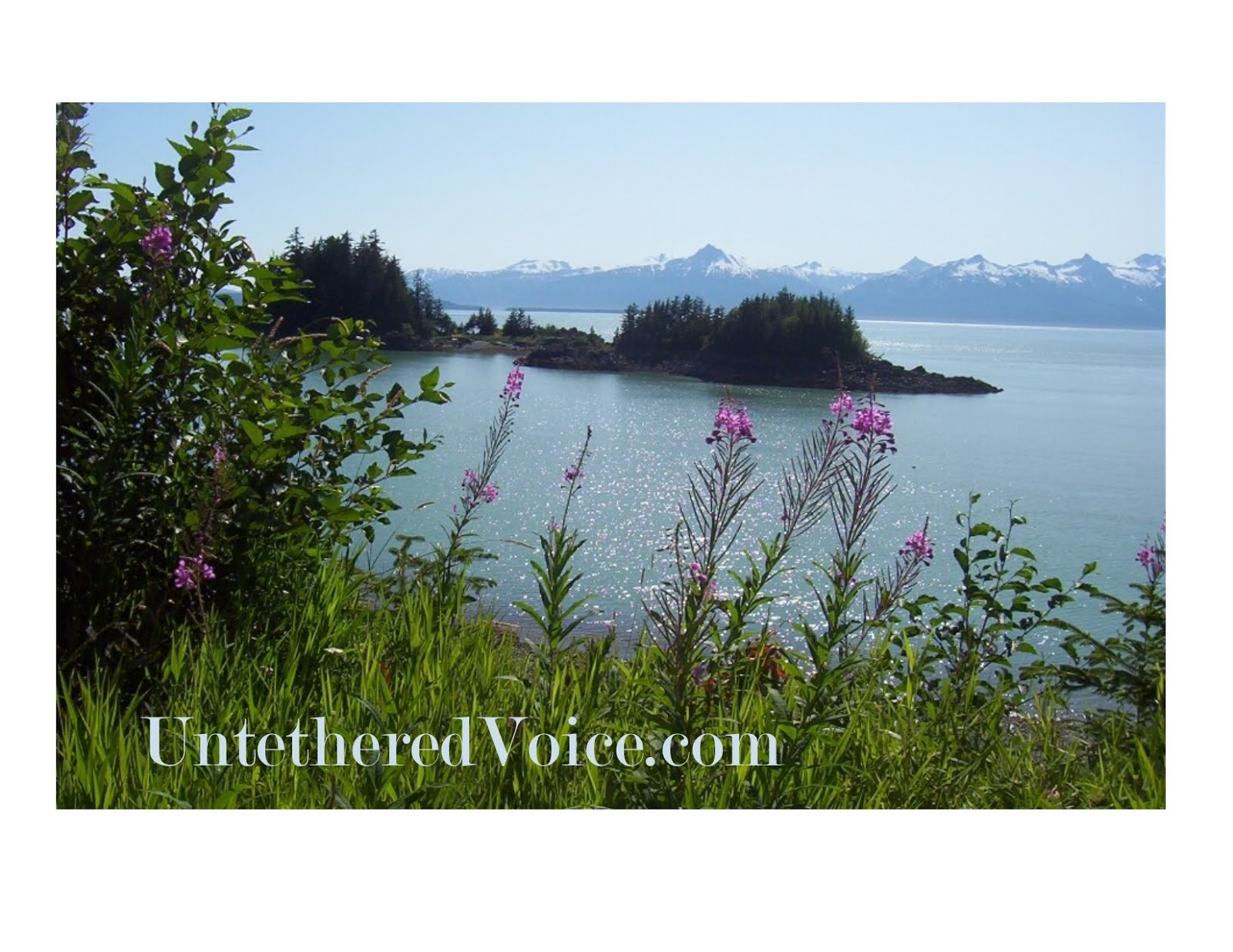 Untethered Voice