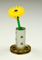 Hello flower!